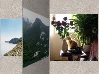 3D Photo Album Screensaver Download
